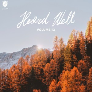 Album Heard Well Collection, Vol. 13 from Various Artists