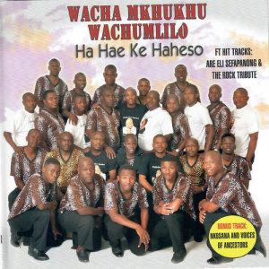 Album Ha Hae Ke Haheso from Wacha Mkhukhu Wachumlilo