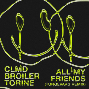 Album All My Friends (Tungevaag Remix) from Martin Tungevaag