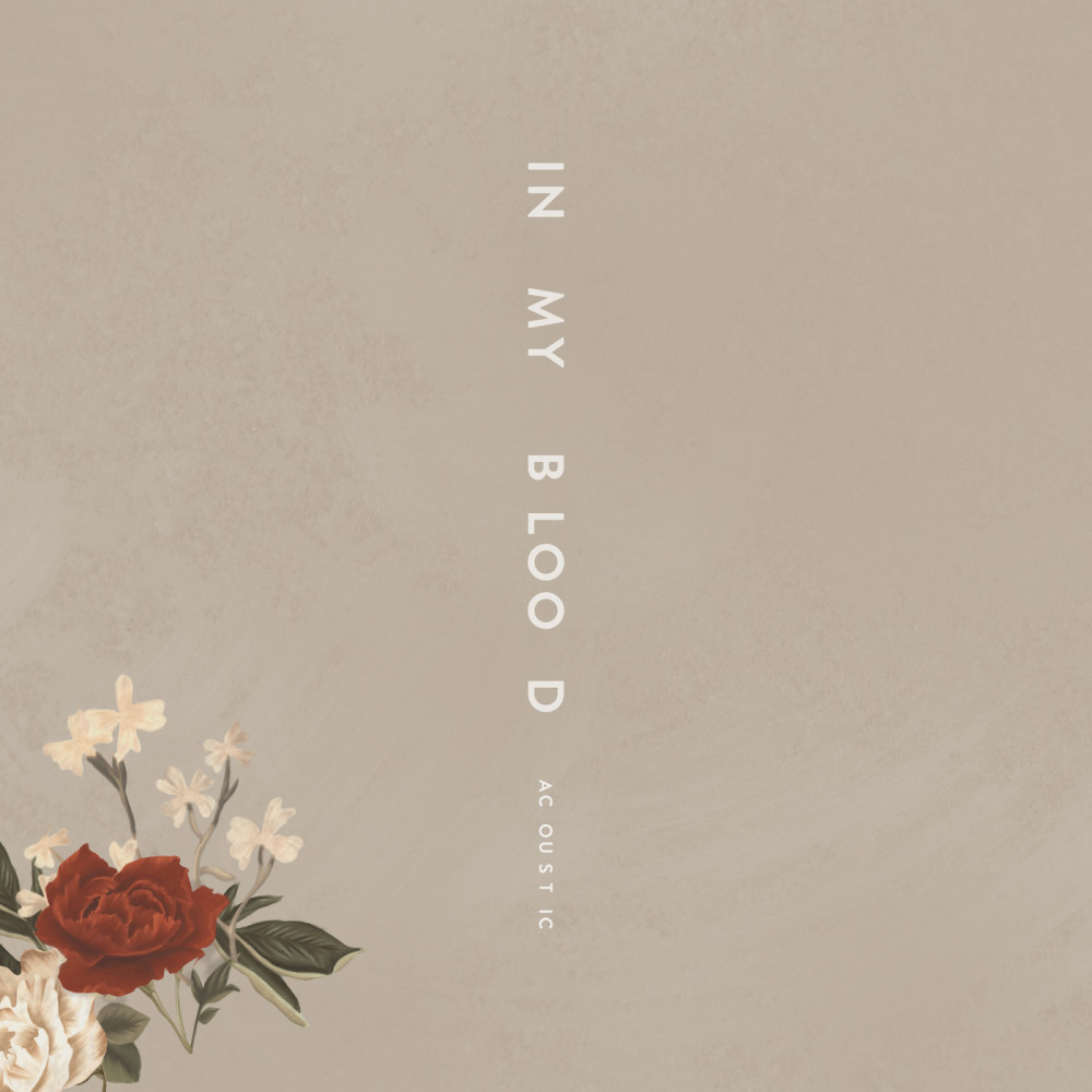 In My Blood 2018 Shawn Mendes