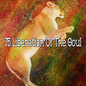 Album 75 Liberation of the Soul from Relaxing Music Therapy