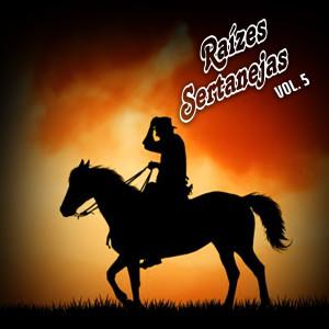 Album Raízes Sertanejas Vol. 5 from Vários Intérpretes