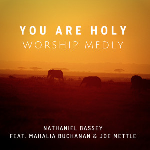 Album You Are Holy (Worship Medly) from Nathaniel Bassey