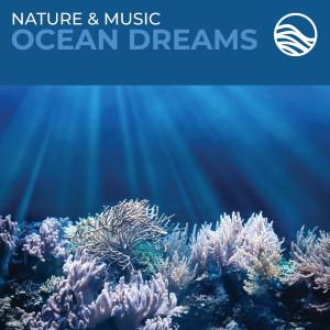 David Arkenstone的專輯Nature & Music: Ocean Dreams