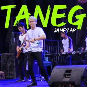 Taneg (Koplo Version)
