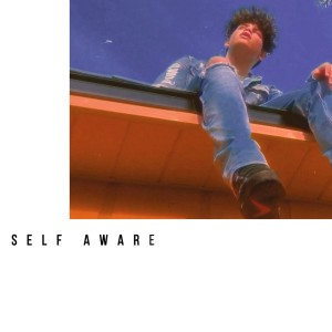 Album Self Aware (Explicit) from Svrite