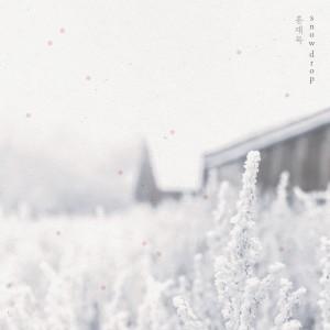 อัลบั้ม Snowdrop