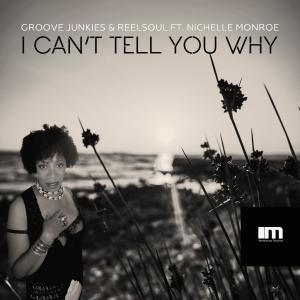 Album I Can't Tell You Why (Groove n' Soul Mixes) from Groove Junkies