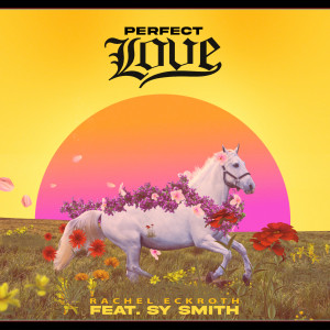 Album Perfect Love from Sy Smith