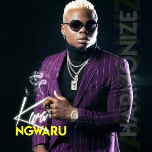 Album Kwa Ngwaru from Harmonize