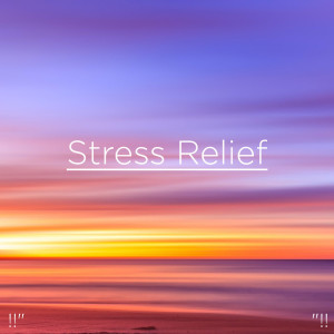 Nature Sounds Nature Music的專輯Stress Relief