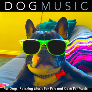 Dog Music的專輯Dog Music for Dogs, Relaxing Music for Pets and Calm Pet Music
