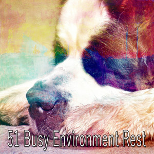 Monarch Baby Lullaby Institute的專輯51 Busy Environment Rest