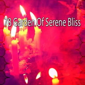 Album 78 Garden of Serene Bliss from White Noise Meditation