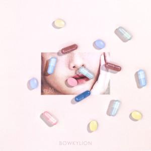 อัลบัม คนไข้ [Instrumental] ศิลปิน BOWKYLION