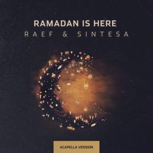 Album Ramadan is Here (Acapella Version) from Raef