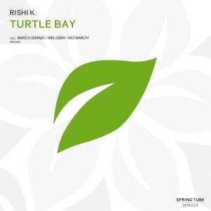 Album Turtle Bay from Rishi K.