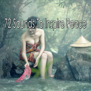 Zen Music Garden的專輯72 Sounds to Inspire Peace