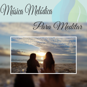 Album Música Melódica para Meditar from Musica Para Meditar