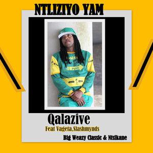 Album Ntliziyo Yam from Qalazive