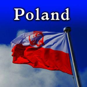Sound Ideas的專輯Poland Sound Effects