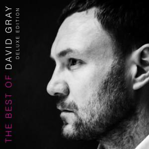 Album The Best of David Gray from David Gray