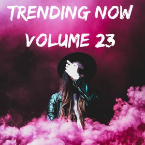 Trending Now Volume 23 (Explicit) dari Various Artists