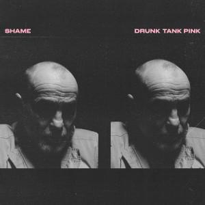 อัลบัม Drunk Tank Pink ศิลปิน Shame