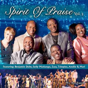 Album Spirit of Praise, Vol. 3 from Spirit of Praise