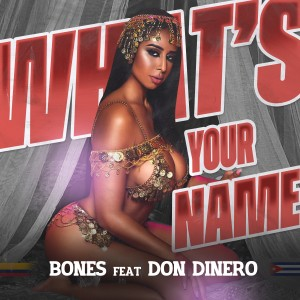 Album What's Your Name (feat. Don Dinero) from Don Dinero