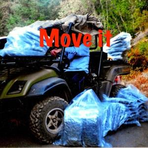 Album Move it (Explicit) from Morten