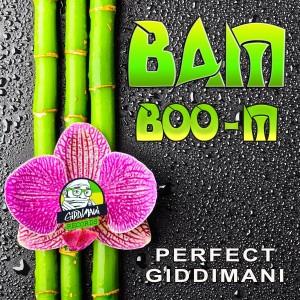 Listen to Reggae Einstien song with lyrics from Perfect Giddimani