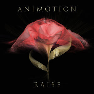 Album Raise Your Expectations from Animotion