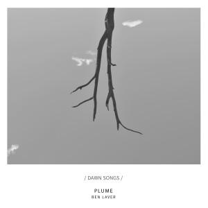 Album Plume from Ben Laver