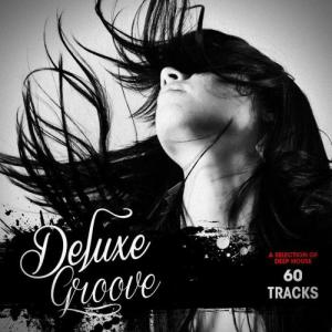 Album Deluxe Groove from Various Artists