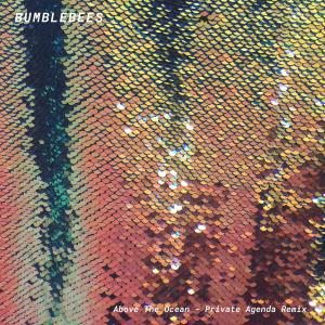 Album Above the Ocean (Private Agenda Remix) from Bumblebees