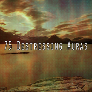Zen Music Garden的專輯75 Destressing Auras