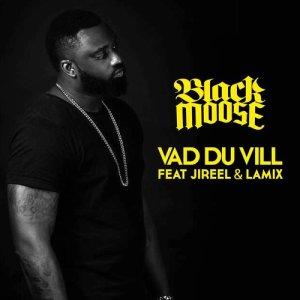 Album Vad du vill (feat. Jireel & Lamix) from Dj Black Moose
