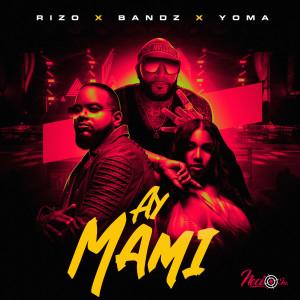 Album Ay Mami (Explicit) from Bandz
