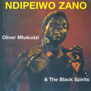 Album Ndipeiwo Zano from Oliver 'Tuku' Mtukudzi