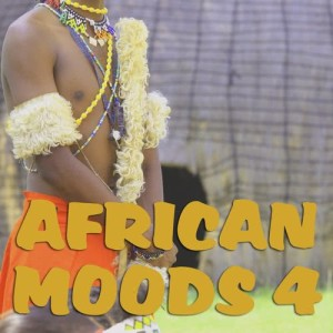 Album African Moods Vol. 4 from Various Artists