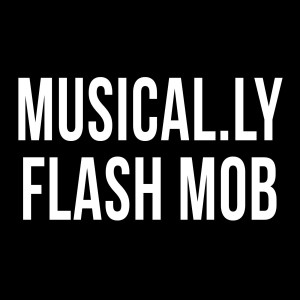 Album Musical.Ly Flash Mob from Rebecca Zamolo