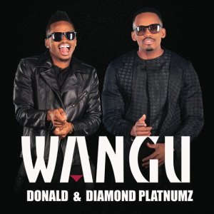Listen to Wangu song with lyrics from Donald