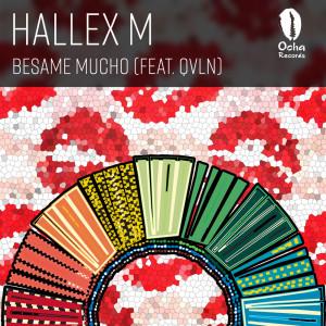Album Besame Mucho from Hallex M