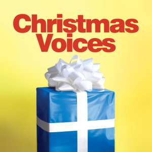 Listen to Cantique de nöel (O Holy Night) song with lyrics from Whitney Houston
