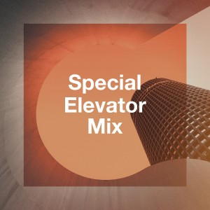 Album Special Elevator Mix from Instrumental Mood