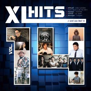 อัลบั้ม XL HITS VOL.14