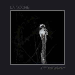Little Symphony的專輯La Noche