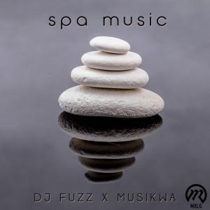 Album Spa Music from DJ Fuzz