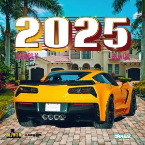 Charly Black的專輯2025